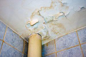 Feuchtigkeitsschaden durch Abwasser